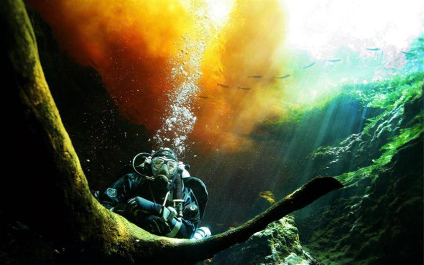I miejsce Grand Prix Photo Baltictech 2009 divers24.pl