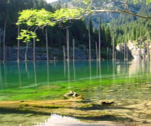 Przepiękne jezioro Kaindy w Kazachstanie – video