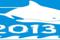 Zapraszamy na obóz Morświn 2013!