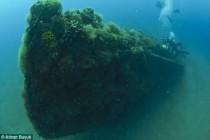 Rewelacyjne odkrycie na Gallipoli