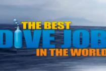 Konkurs na najlepszą nurkową prace na świecie rozstrzygnięty.