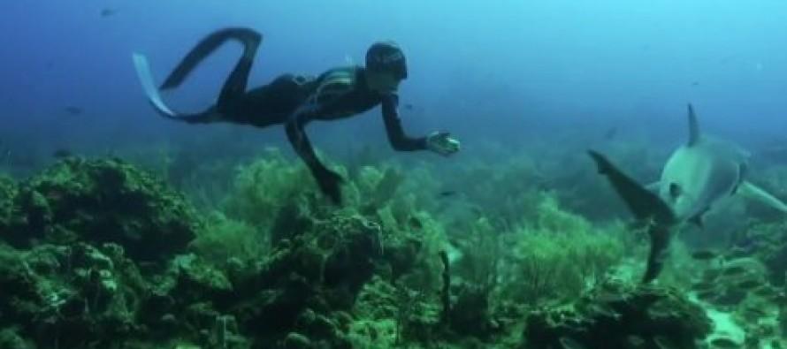 Roatan – nurkowa perła Hondurasu