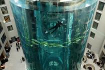Aquadom Aquarium – piękno podwodnego świata w sercu europejskiej metropolii