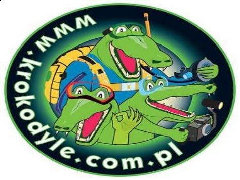 krokodylewosp