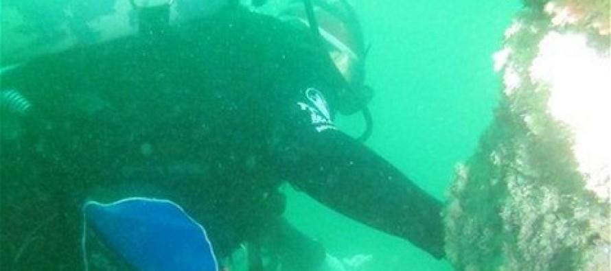 Zidentyfikowano wrak brytyjskiego parowca SS Sobraon