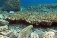 Małe Pompeje odnalezione w pobliżu starożytnej greckiej wyspy