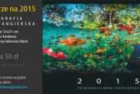 Zgarnij nurkowy kalendarz na rok 2015 autorstwa Ireny Stangierskiej!