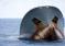 Rekordowy pościg – Sea Shepherd rozbija kłusowników!