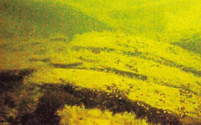 The-wreck-identified-by-Rauno-Koivusaari