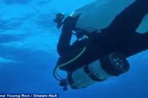Kradzież zestawu fotograficznego przez… rekina! – video
