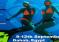Bluego: VI edycja Zlotu Freediverek 2015 w Dahabie!