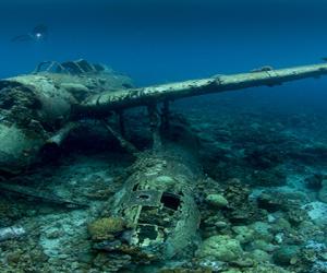 Jake Sea Plane – ikona nurkowania wrakowego na Palau