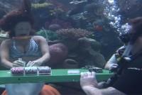 Podwodna rozgrywka pokera w Silverton Casino – video