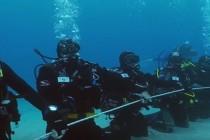 Włochy: 173 nurków ustanowiło nowy rekord Guinnessa! – video