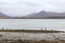 Dwa wraki odnalezione w okolicy irlandzkiego wybrzeża
