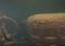 W Zatoce Fińskiej odnaleziono i zidentyfikowano wrak okrętu podwodnego Sch-408! – zdjęcia + video