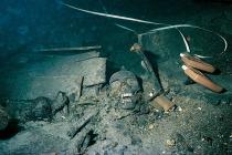 Niezwykłe znalezisko na bałtyckim wraku liczącym sobie 340 lat!