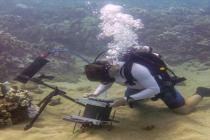 Inżynierowie MIT stowrzyli pierwszy podwodny mikroskop – video