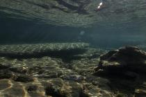 Ruiny starożytnego miasta odkryto w wodach w pobliżu Tanzanii – video