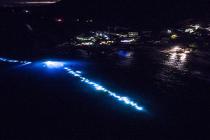 We Włoszech ustanowiono Rekord Świata podczas nurkowania nocą