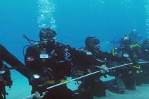 Na Cyprze 200 nurków zamierza pobić rekord Guinnessa