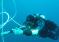 Pantha rei. Historia z życia z nurkowaniem w tle