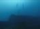 "Nurkowanie na wraku supertankowca ""Haven"" – video"