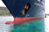 Statek wycieczkowy uszkodził jedną z najpiękniejszych raf w Indonezji – video