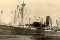 """Rosyjscy nurkowie odnaleźli wrak statku SS """"Boy Federsen"""", który miał przewozić dzieła sztuki zrabowane przez nazistów – video"""