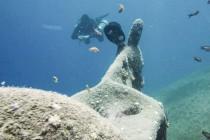 Morze Czerwone rozstąpiło się, żeby ukazać… osła?? – video