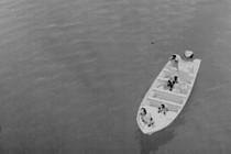 Nocny dron patrolujący Sea Shepherd zestrzelony przez kłusowników – video
