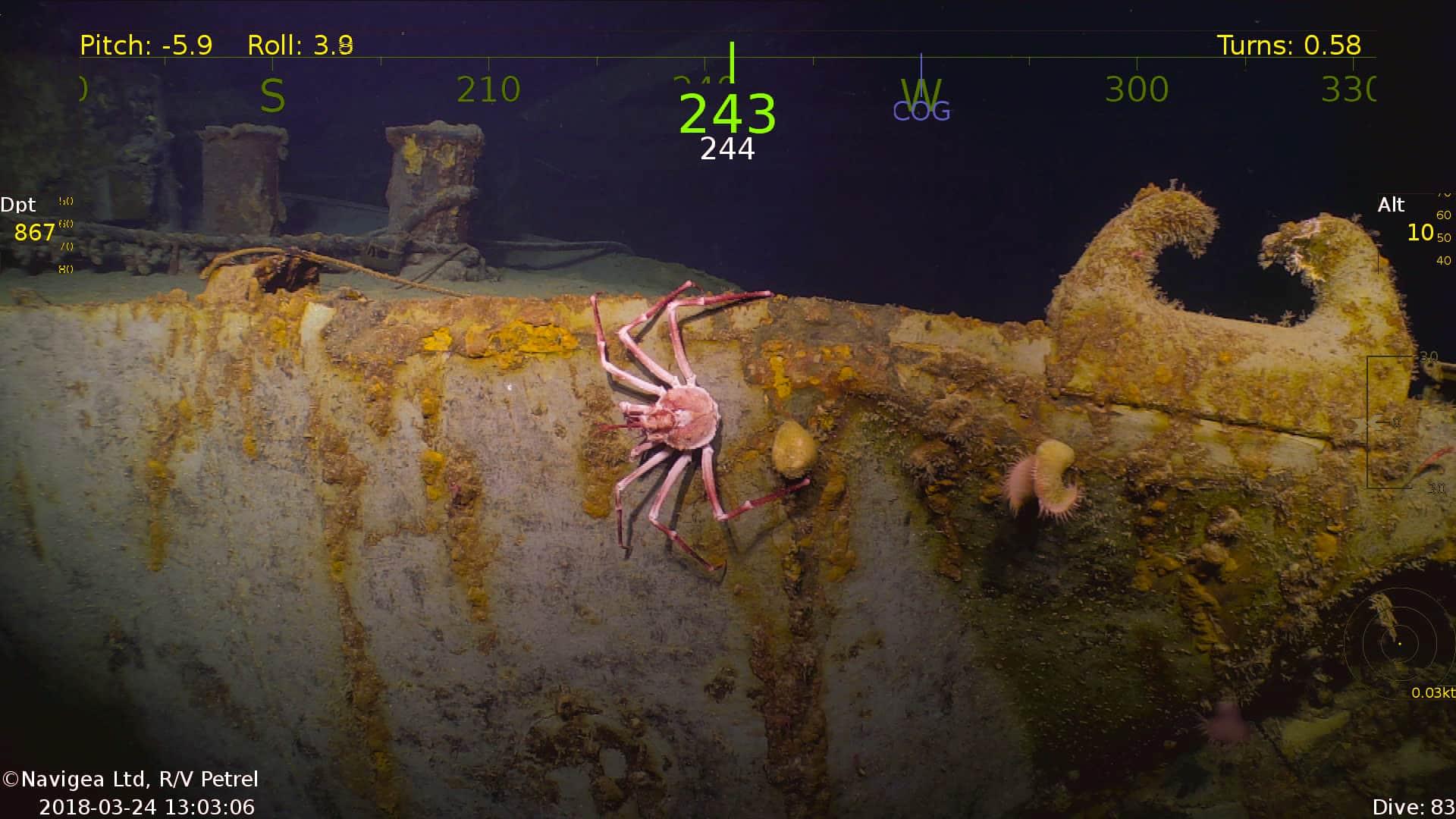 Big-Crab-on-USS-Helena