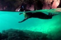 W Irlandii pod wyspą odkryto błękitną lagunę! – video