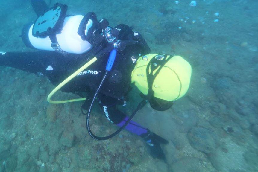 Archeolodzy szukający prehistorycznych artefaktów divers24.pl