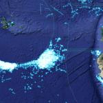 Olbrzymia chińska flota rybacka na Galapagos divers24.pl
