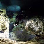 Cenota Morze Karaibskie divers24.pl