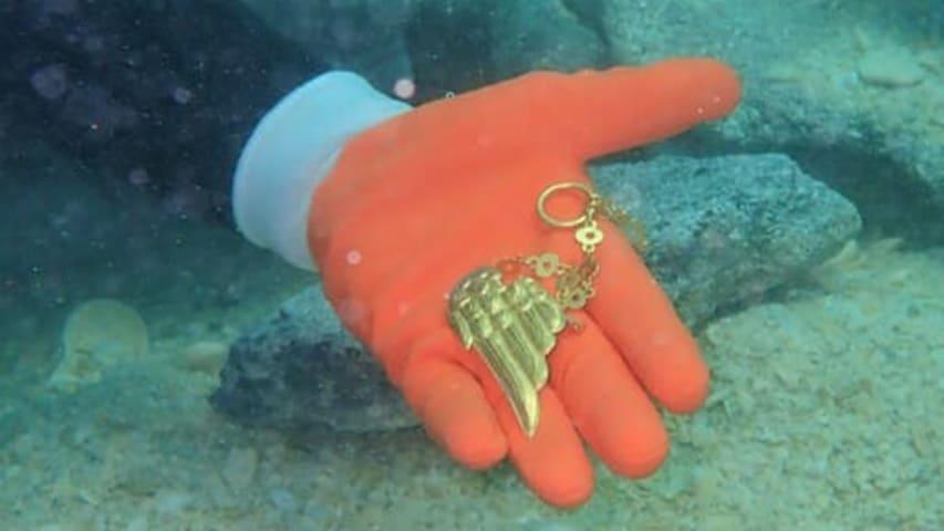 Brakujące złote skrzydło pod odnalezieniu 1715fleetsociety divers24.pl
