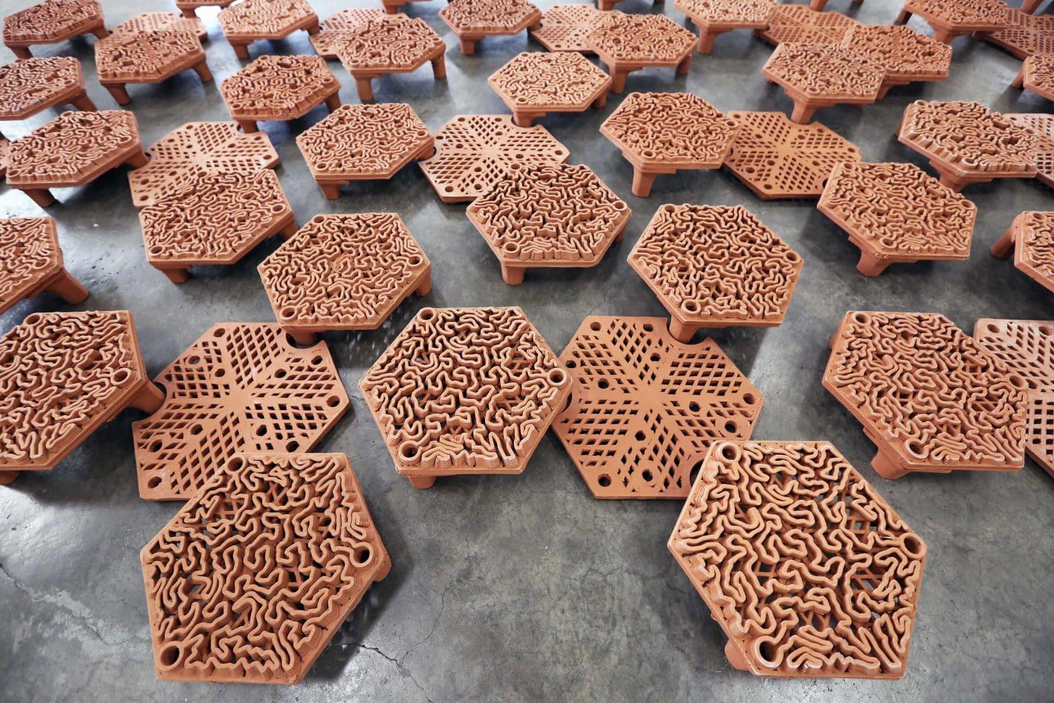 Wydrukowane płytki rafowe 3D University of Hong Kong divers24.pl
