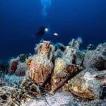 Podwodne muzeum Grecja wrak Peristera divers24.pl