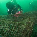 Gigantyczna sieć-widmo Hands Deep Plymouth divers24.pl