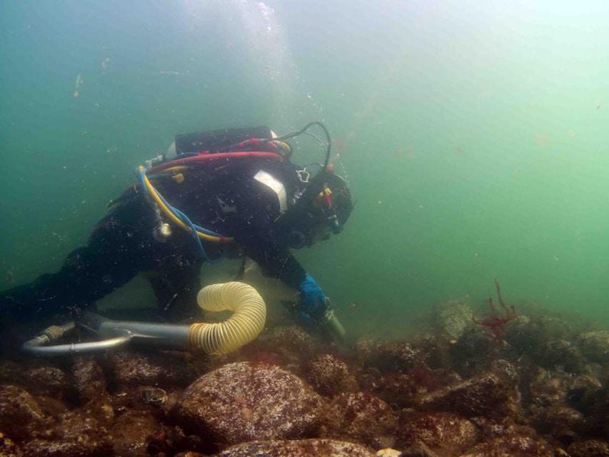 Archeolog badający wrak Delmenhorst divers24.pl