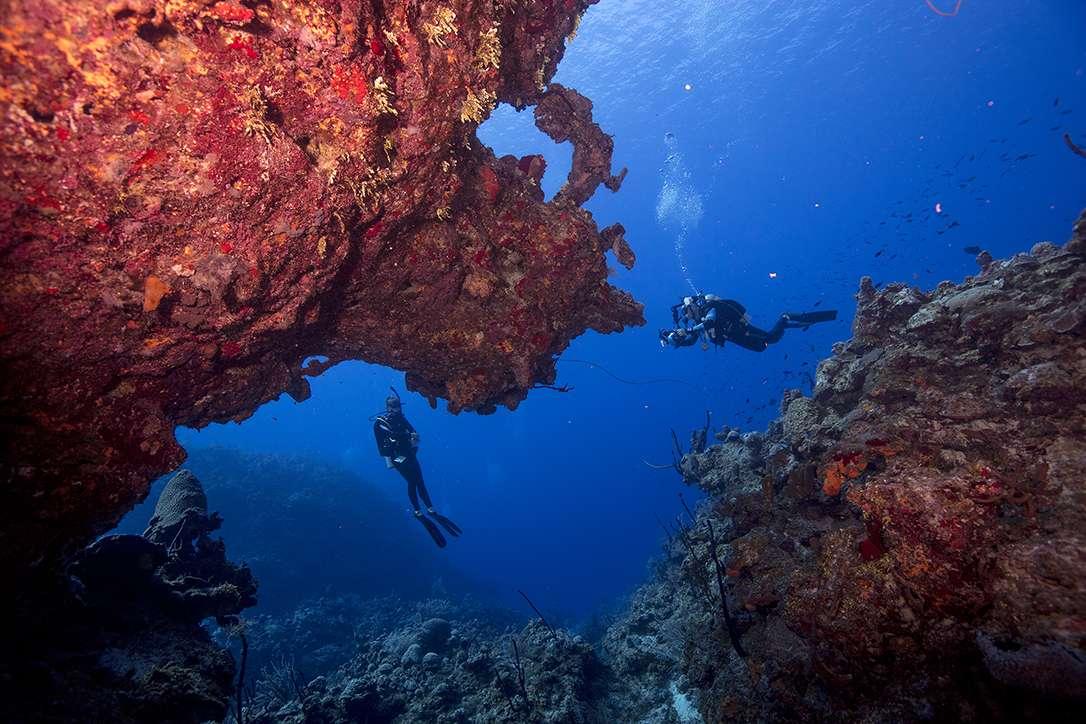 Szkolenie PADI fotografia podwodna divers24.pl