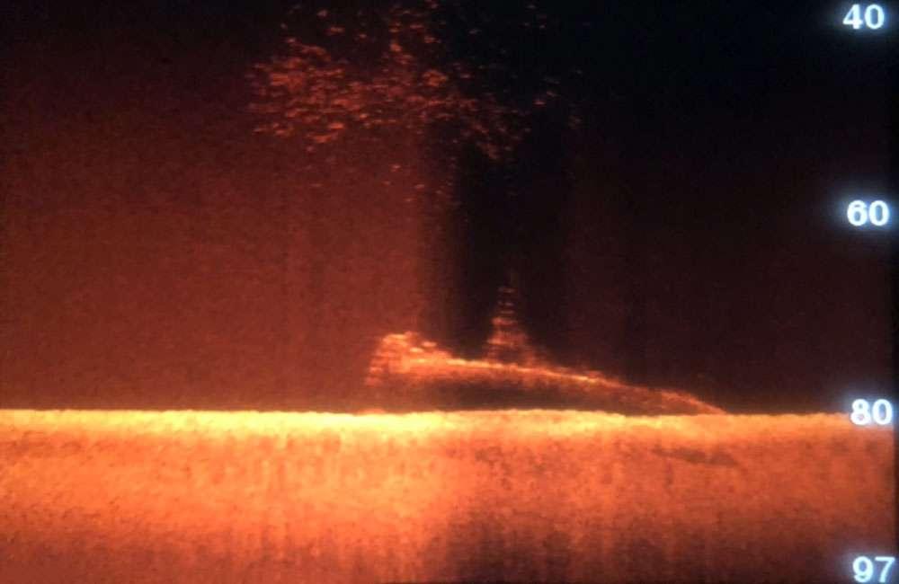 Skan sonaru bocznego wraku USS Grenadier divers24.pl