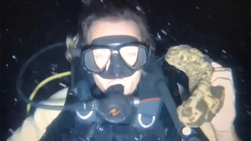 Nurek aresztowany w Tajlandii divers24.pl