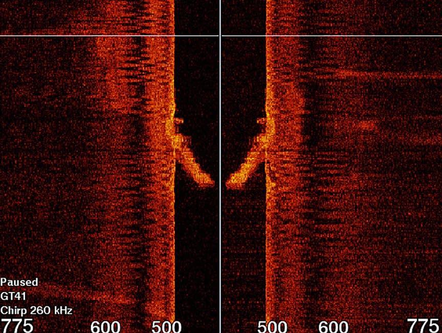 skan sonaru wrak parowca divers24.pl