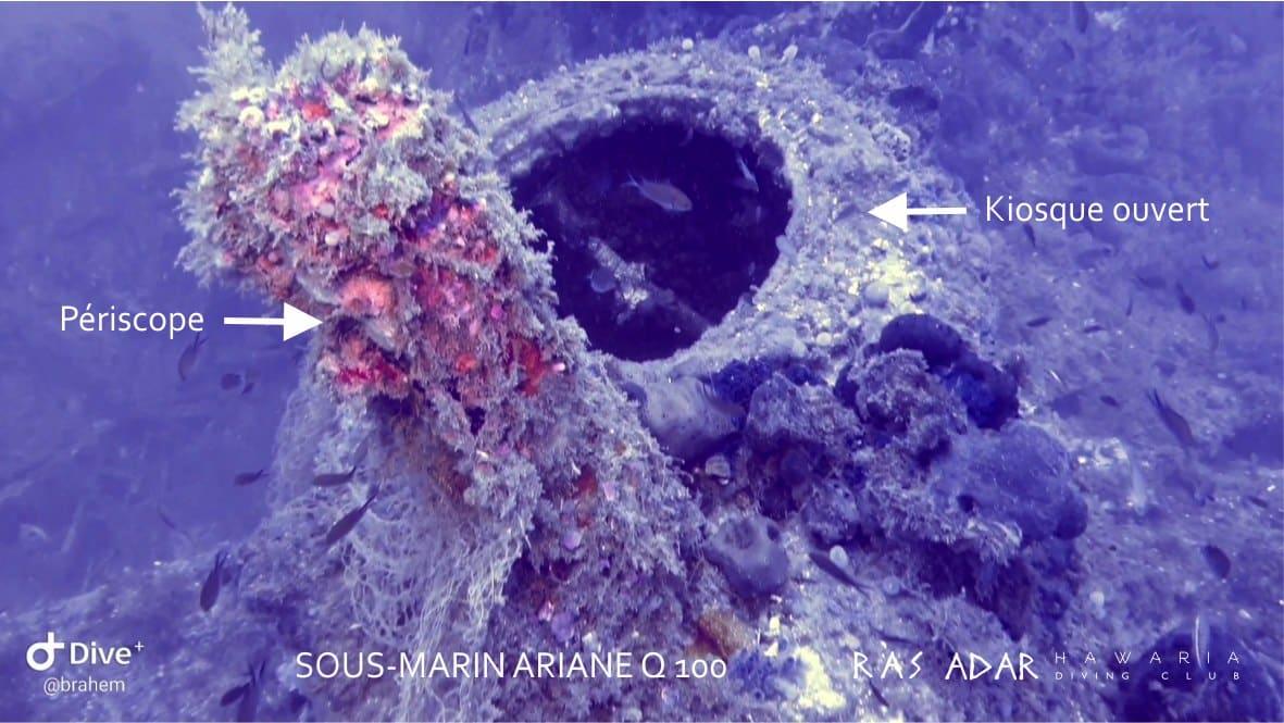 Kiosk Na Wraku Francuskiego Okrętu Podwodnego Ariane Divers24.pl