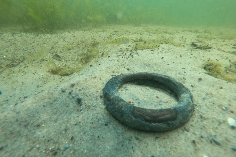 Nagolennik z brązu odnaleziony przez archeologów