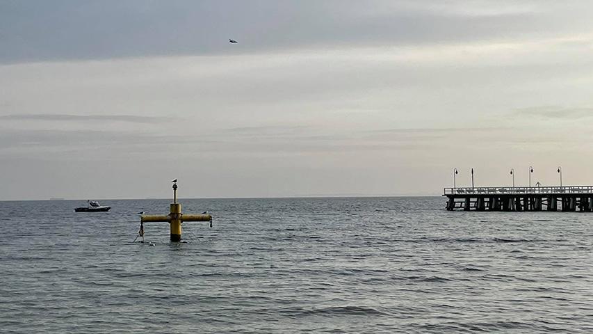 Orłowiskie molo Gdynia