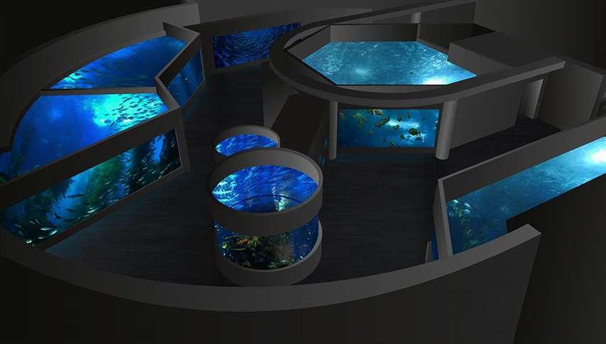 akwaria wizualizacja