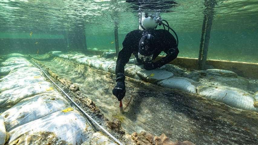 nurek archeolog oczyszcza wrak prehistorycznej łodzi